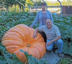A Giant Pumpkin grown by Jack and Sherry LaRue, weighing in at over 500 kg's