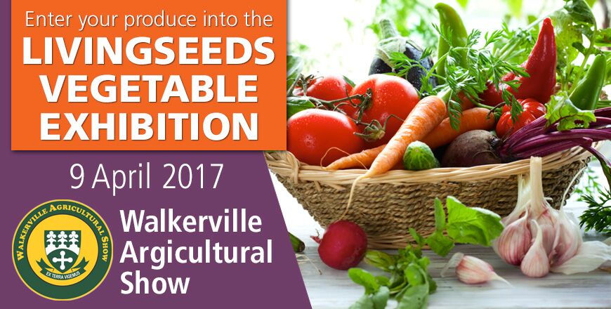 Come and show off your produce at the 2017 Livingseeds Vegetable Exhibition.