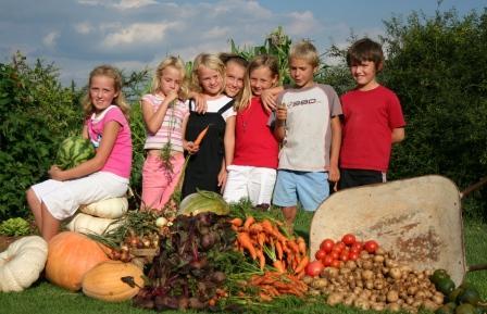 harvest_kids